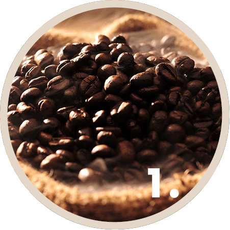 CUP&CINO Konzept: Beste Kaffeebohnen aus besten Anbaugebieten
